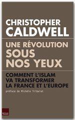 Une révolution sous nos yeux ; comment l'Islam va transformer la France et l'Europe
