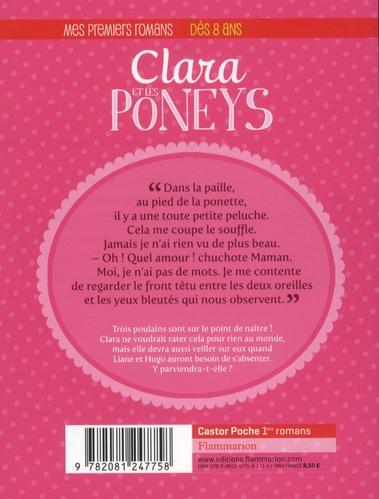 Clara et les poneys t.2 ; les nouveaux poulains
