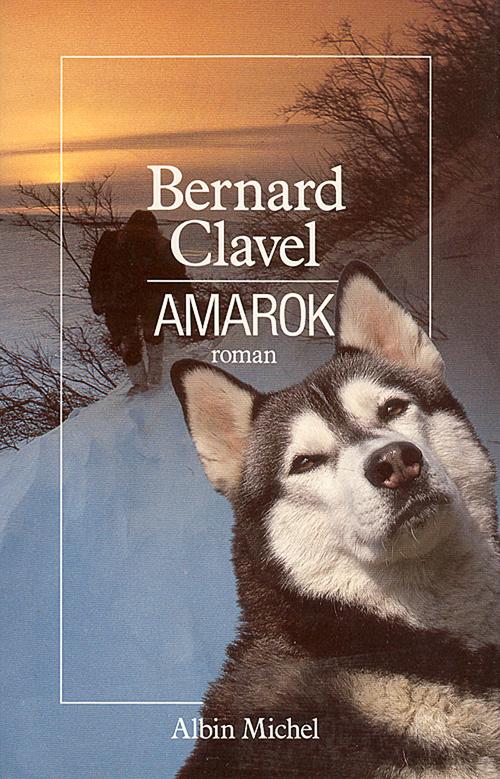 Le royaume du nord t.4 ; Amarok