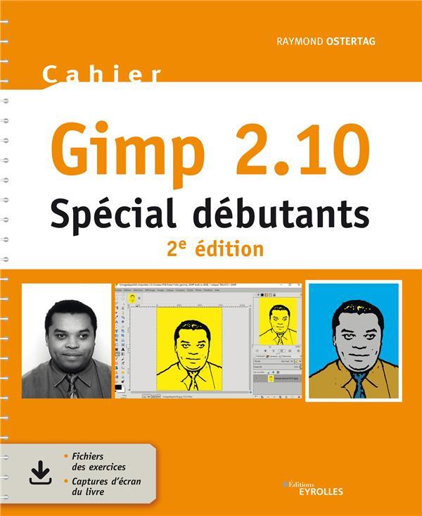 Gimp 2.10 : spécial débutants (2e édition)
