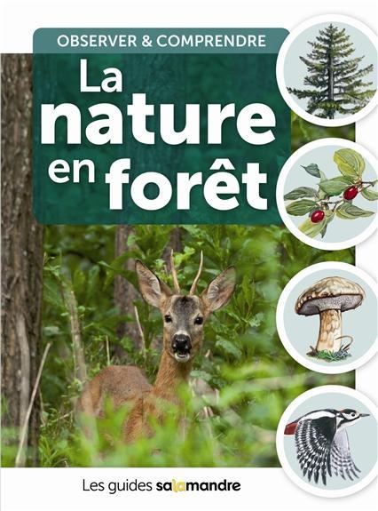 la nature en forêt ; observer et comprendre
