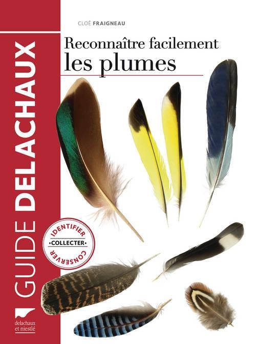 Reconnaître facilement les plumes ; identifier, collecter, conserver