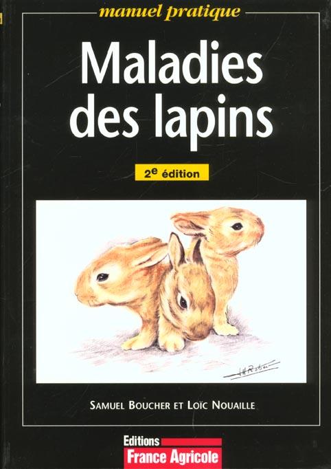 Maladies Des Lapins