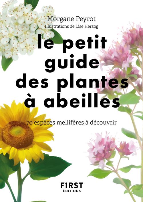 Petit guide des plantes à abeilles