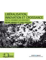 Vente Livre Numérique : Libéralisation, innovation et croissance - Faut-il vraiment les associer ?  - Ivan Ledezma - Bruno Amable