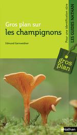 Les champignons  - Edmund Garnweidner - Edmund Gardweidner