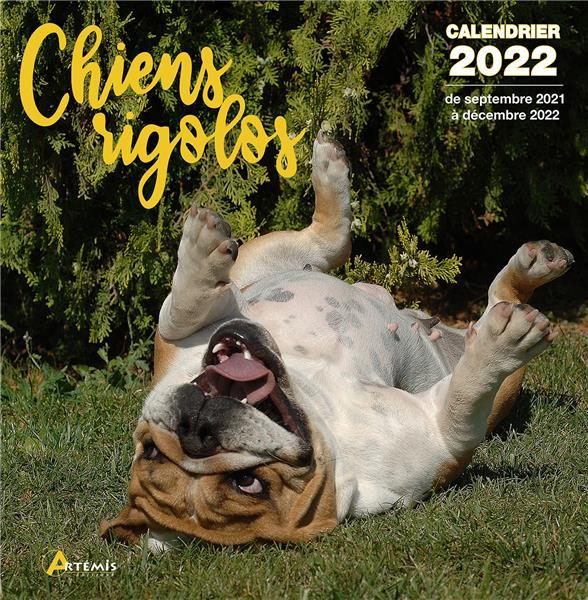 Chiens rigolos (édition 2022)