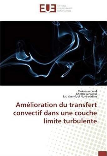 Amélioration du transfert convectif dans une couche limite turbulente