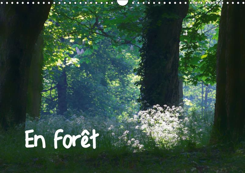 En foret (calendrier mural 2019 din a3 horizontal) - ambiances forestieres (calendrier mensuel, 14 p