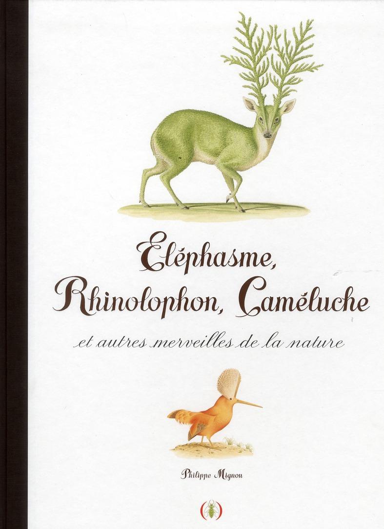 Eléphasme, rhinolophon, cameluche et autres merveilles de la nature