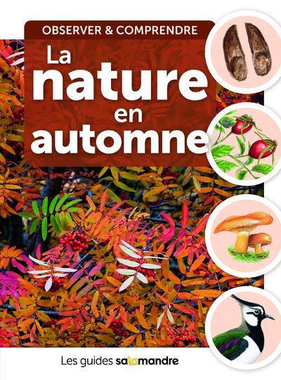 la nature en automne ; observer et comprendre