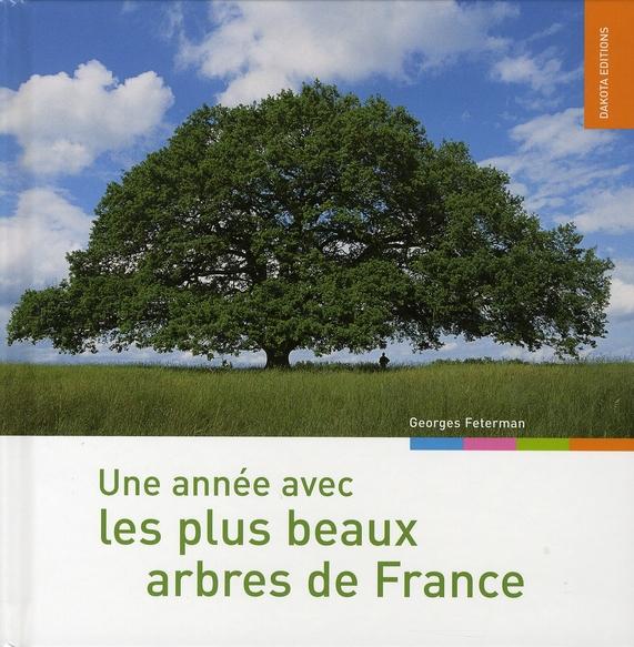 Une année avec les plus beaux arbres de France