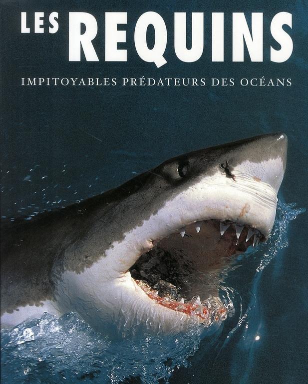Les requins ; impitoyables prédateurs des océans