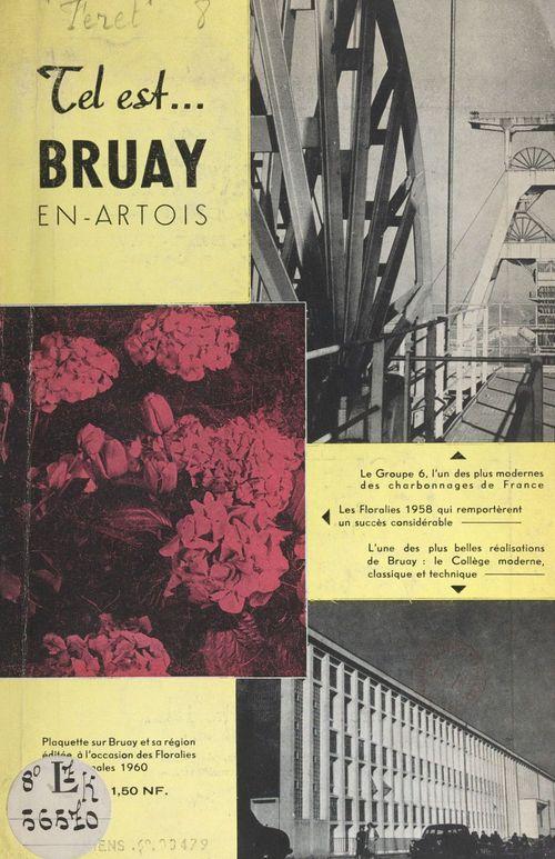 Bruay-en-Artois et sa région  - Germain Féret