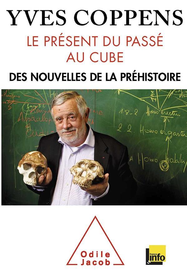Le présent du passé au cube ; l'information préhistorique