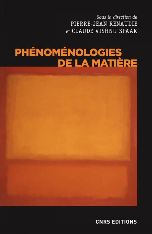 Phenomenologies de la matiere