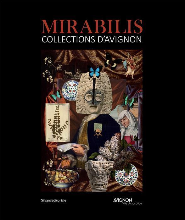 Mirabilis ; collections d'Avignon
