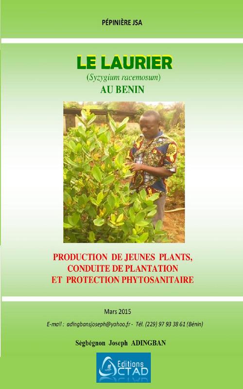 Le Laurier (Syzygium racemosum) : production, plantation et protection phytosanitaire
