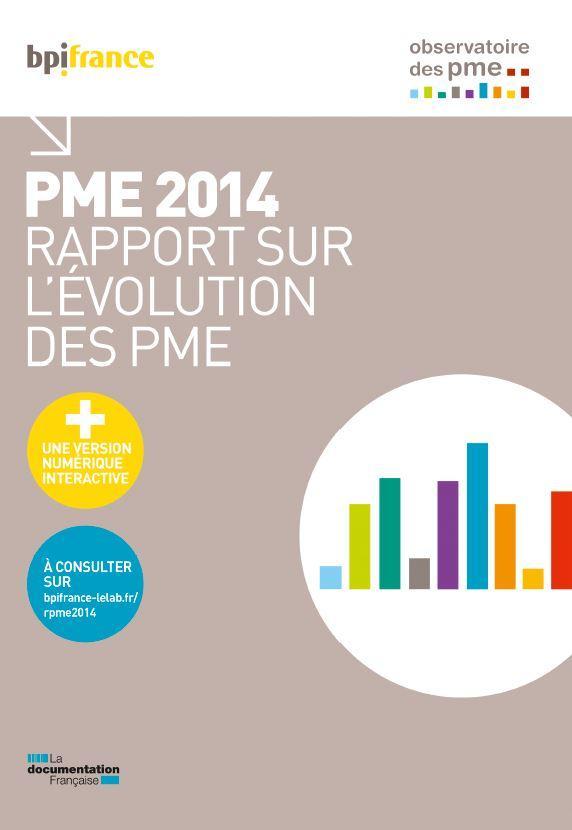 Pme 2014 ; rapport sur l'évolution des PME