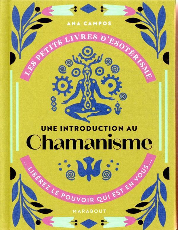 Les petits livres d'ésoterisme ; une introduction à l'interprétation du chamanisme ; libérez le pouvoir qui est en vous