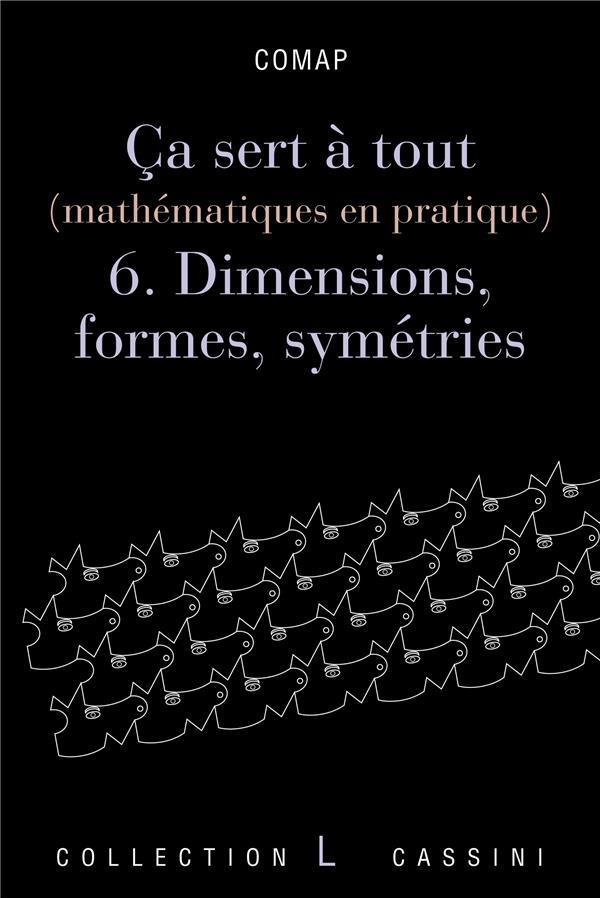 ça sert à tout (mathématiques en pratique) t.6 ; dimensions, formes et symétries