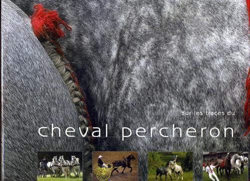 Sur les traces du cheval percheron