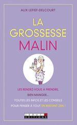 Vente Livre Numérique : La grossesse malin  - Alix Lefief-Delcourt