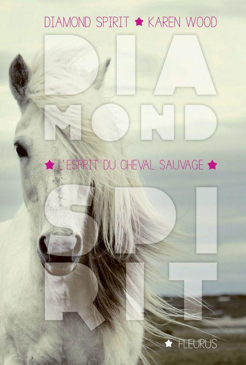 Diamond spirit t.2 ; l'esprit du cheval sauvage