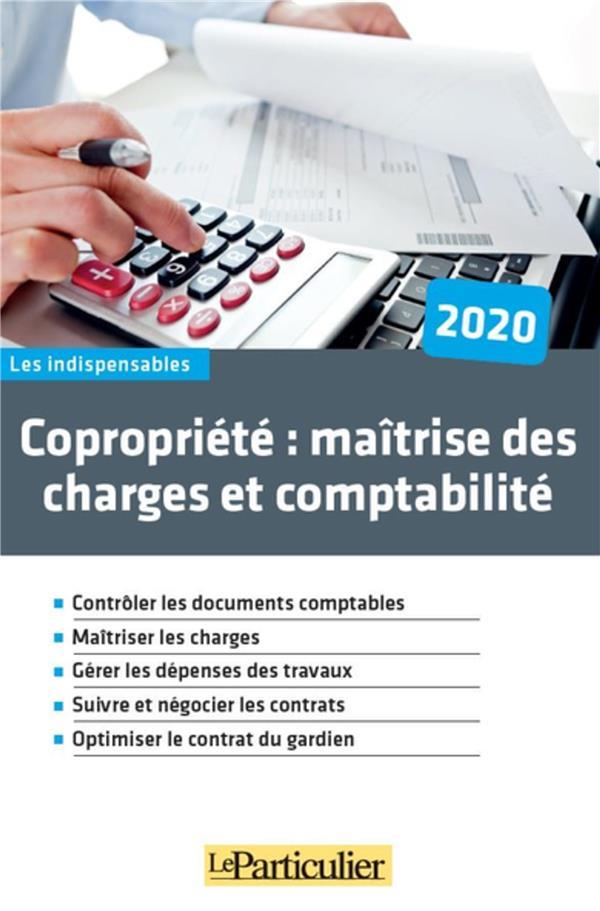 COPROPRIETE : MAITRISE DES CHARGES ET COMPTABILITE  -  CONTROLER LES DOCUMENTS COMPTABLES COLLECTIF LE PARTICU
