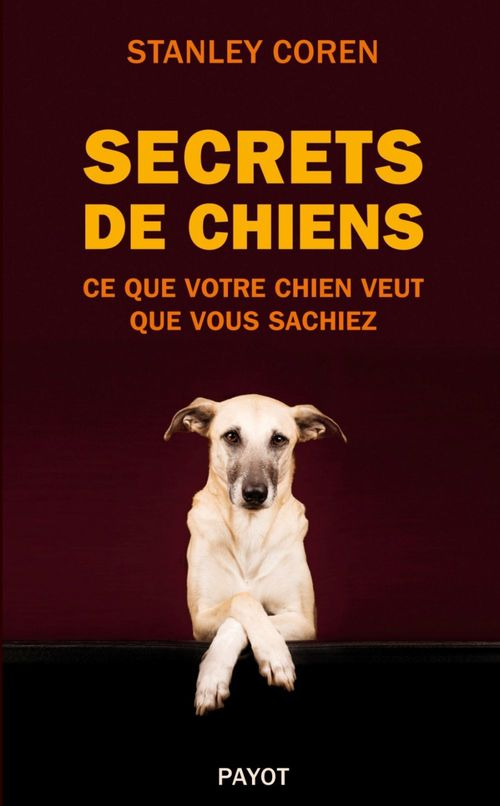 Secrets de chiens ; ce que votre chien veut que vous sachiez