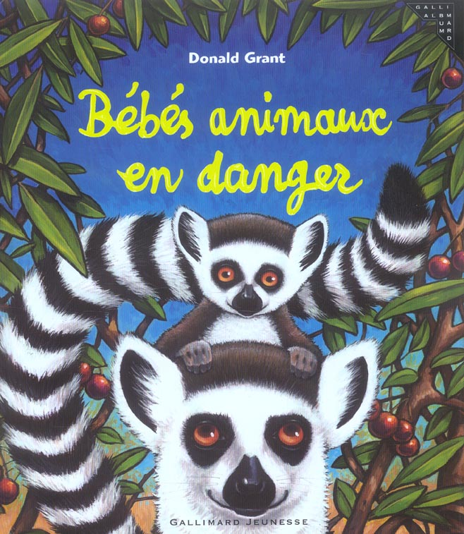 Bebes animaux en danger
