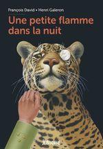 Vente Livre Numérique : Une petite flamme dans la nuit  - François David