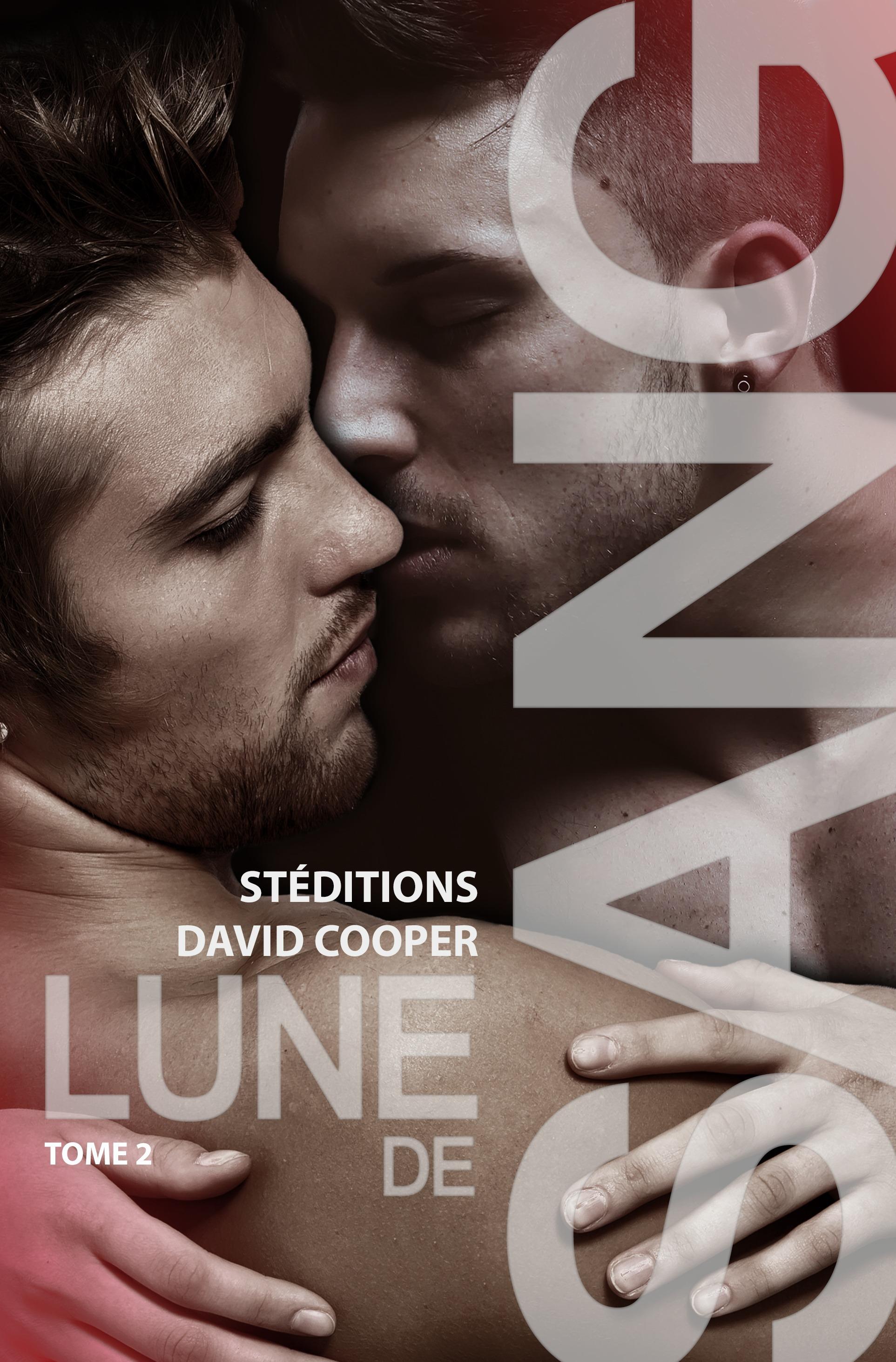 Lune de sang - Tome 2   Roman gay, livre gay