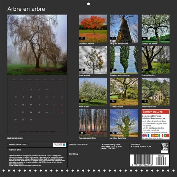 Arbre en arbre (calendrier mural Square) (édition 2018)