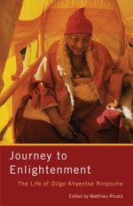 Vente EBooks : Journey to Enlightenment  - Matthieu Ricard