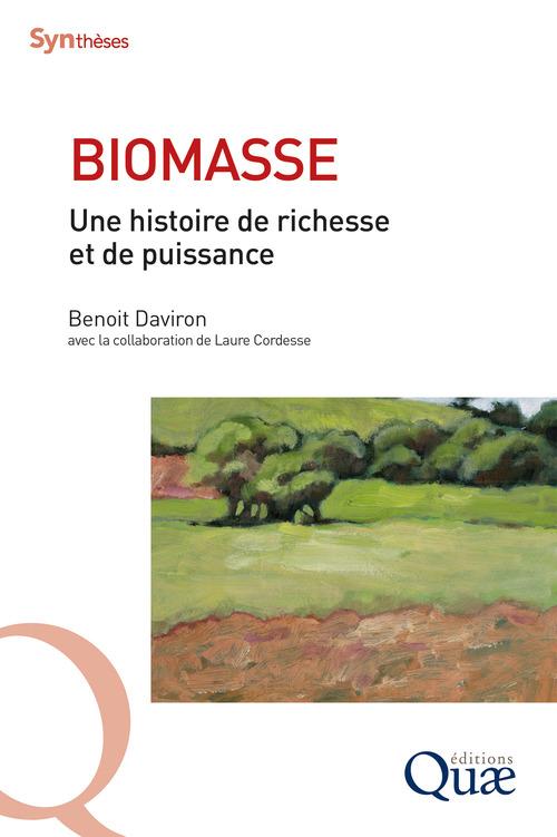 Biomasse ; une histoire de richesse et de puissance