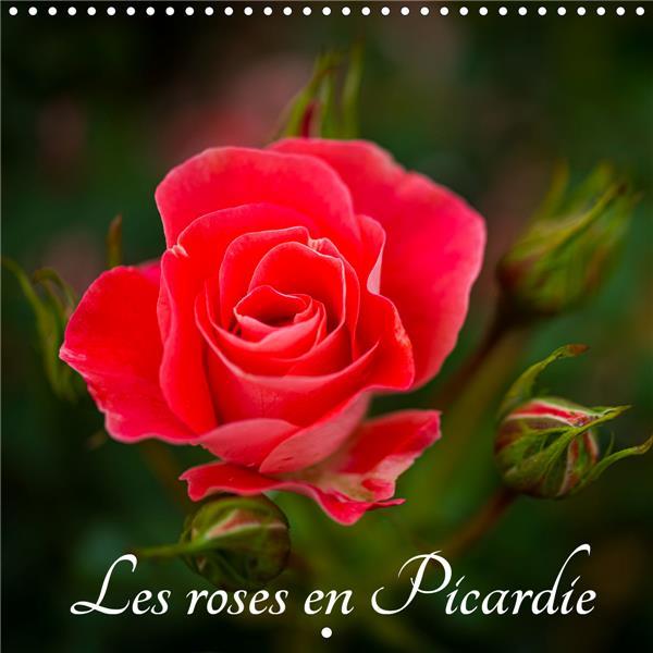 Les roses en Picardie (édition 2020)