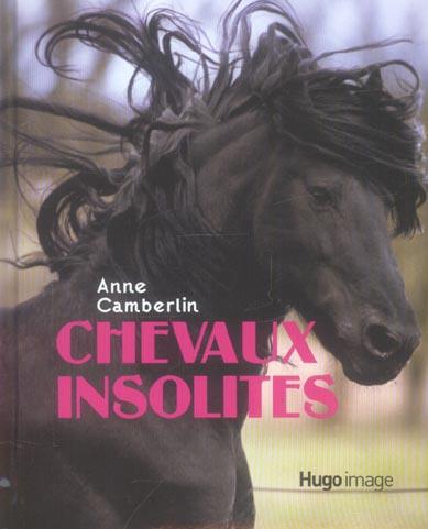 Chevaux insolites