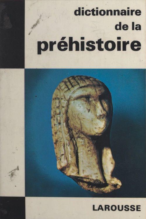 Dictionnaire de la Préhistoire  - Michel Brezillon