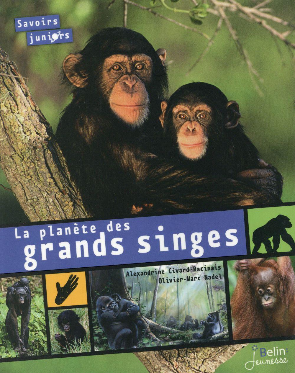 La planète des grands singes