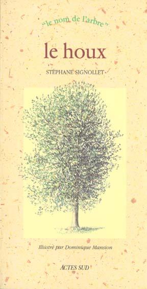 Houx (le) - le nom de l'arbre