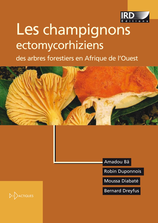 Les champignons ectomycorhiziens des arbres forestiers en afrique de l'ouest methodes d'etude, diver