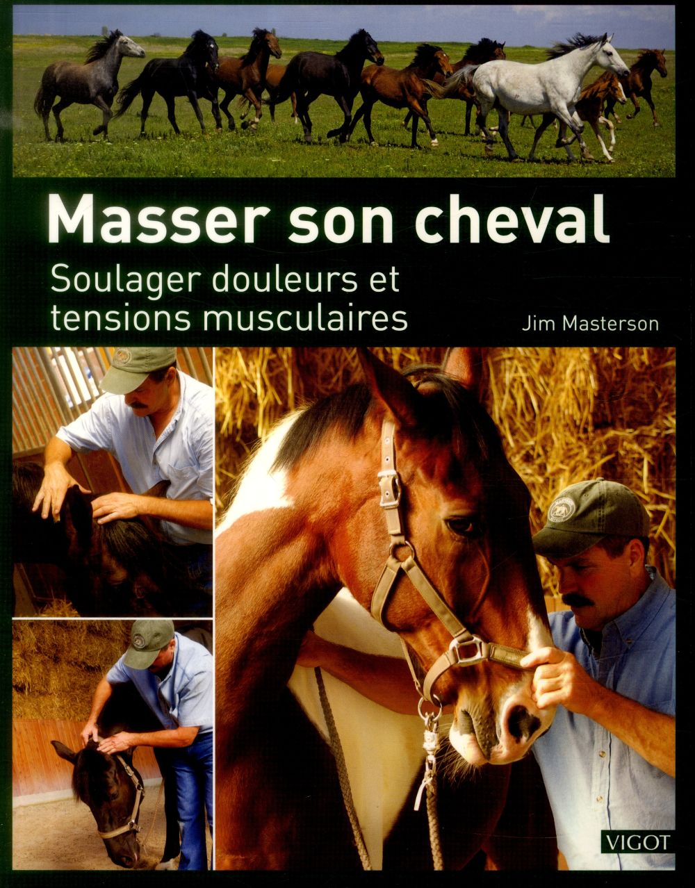 Masser son cheval ; soulager douleurs et tensions musculaires