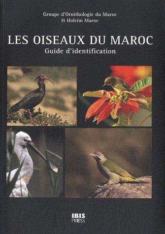 Les Oiseaux Du Maroc ; Guide D'Identification