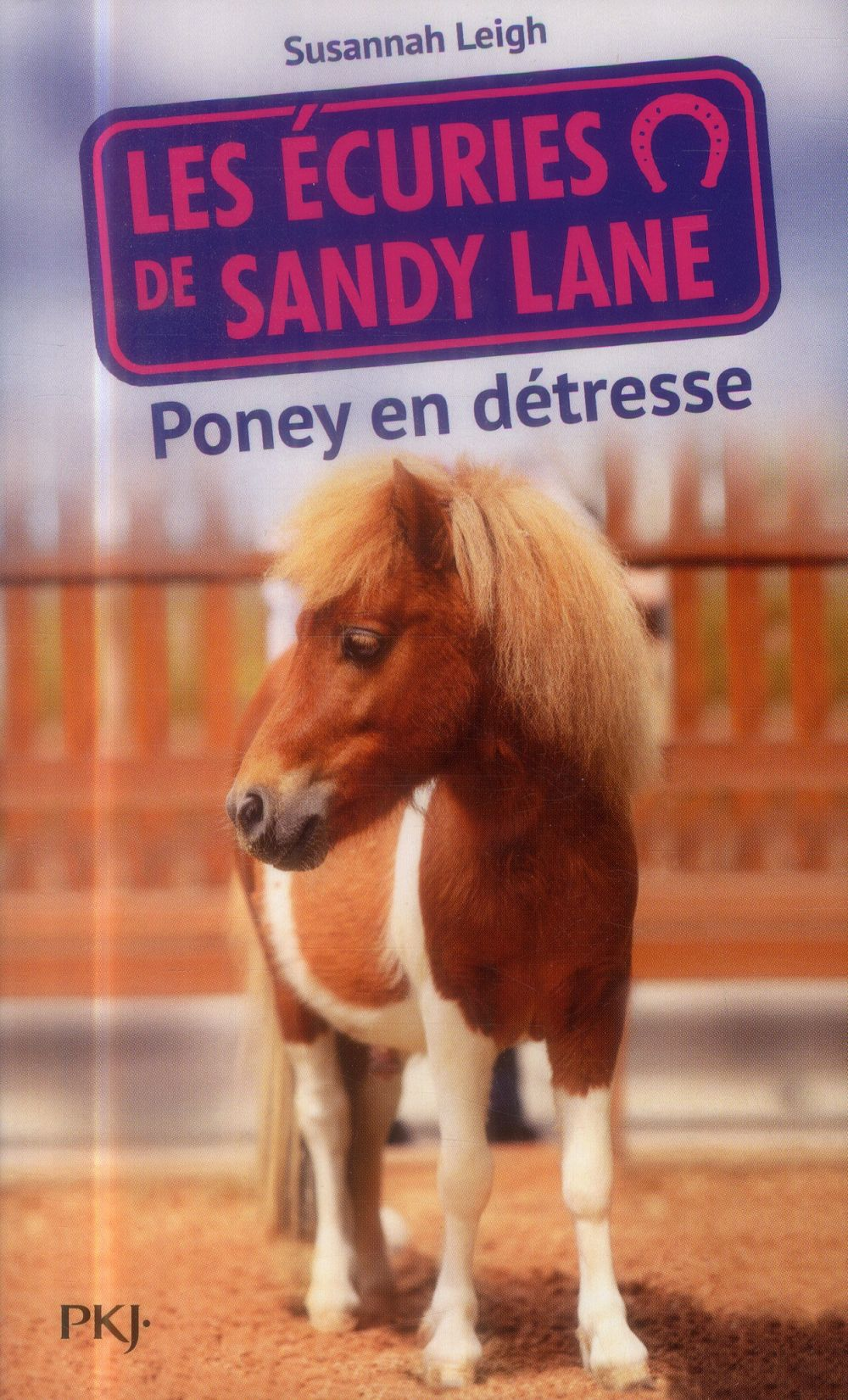 Les Ecuries De Sandy Lane ; Poney En Detresse