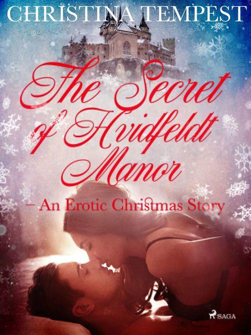 The Secret of Hvidfeldt Manor - An Erotic Christmas Story