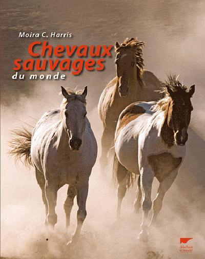 Chevaux Sauvages Du Monde