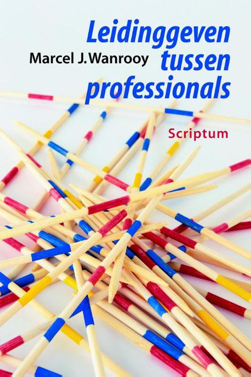 Leidinggeven tussen professionals