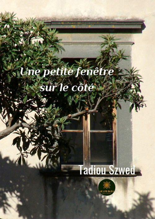 Une petite fenêtre sur le côté  - Szwed Tadiou