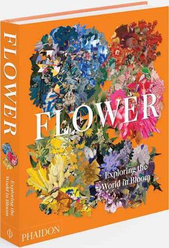 Flower ; exploring the world in bloom